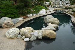 residential pool 22